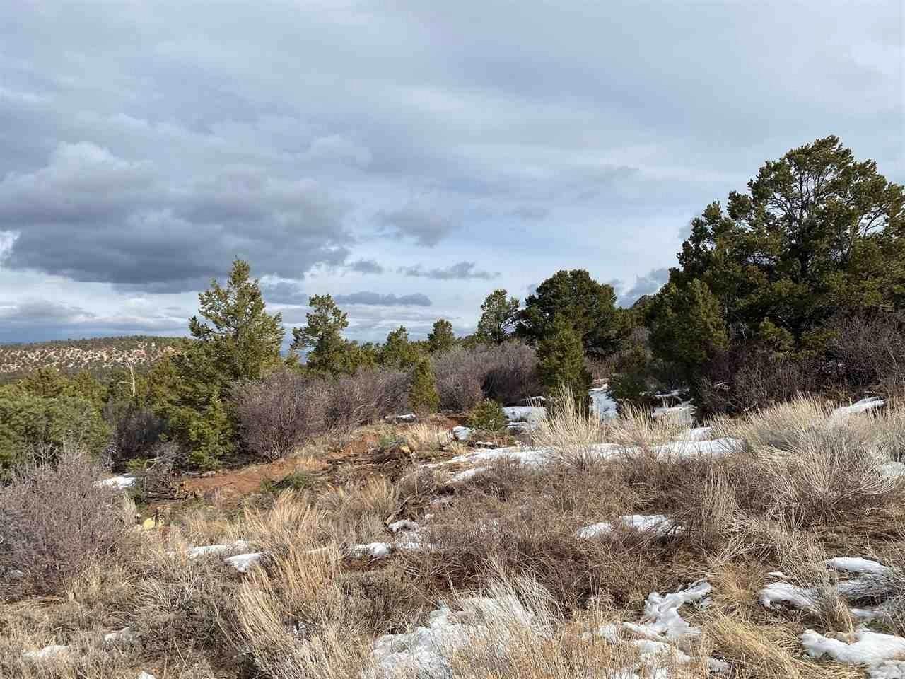 Lot 25 Elk Reserve Road - Photo 1