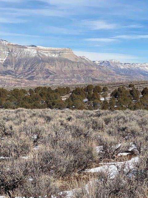 4399 V 5/10 Road Lot 4, De Beque, CO 81630 (MLS #20210786) :: The Kimbrough Team | RE/MAX 4000