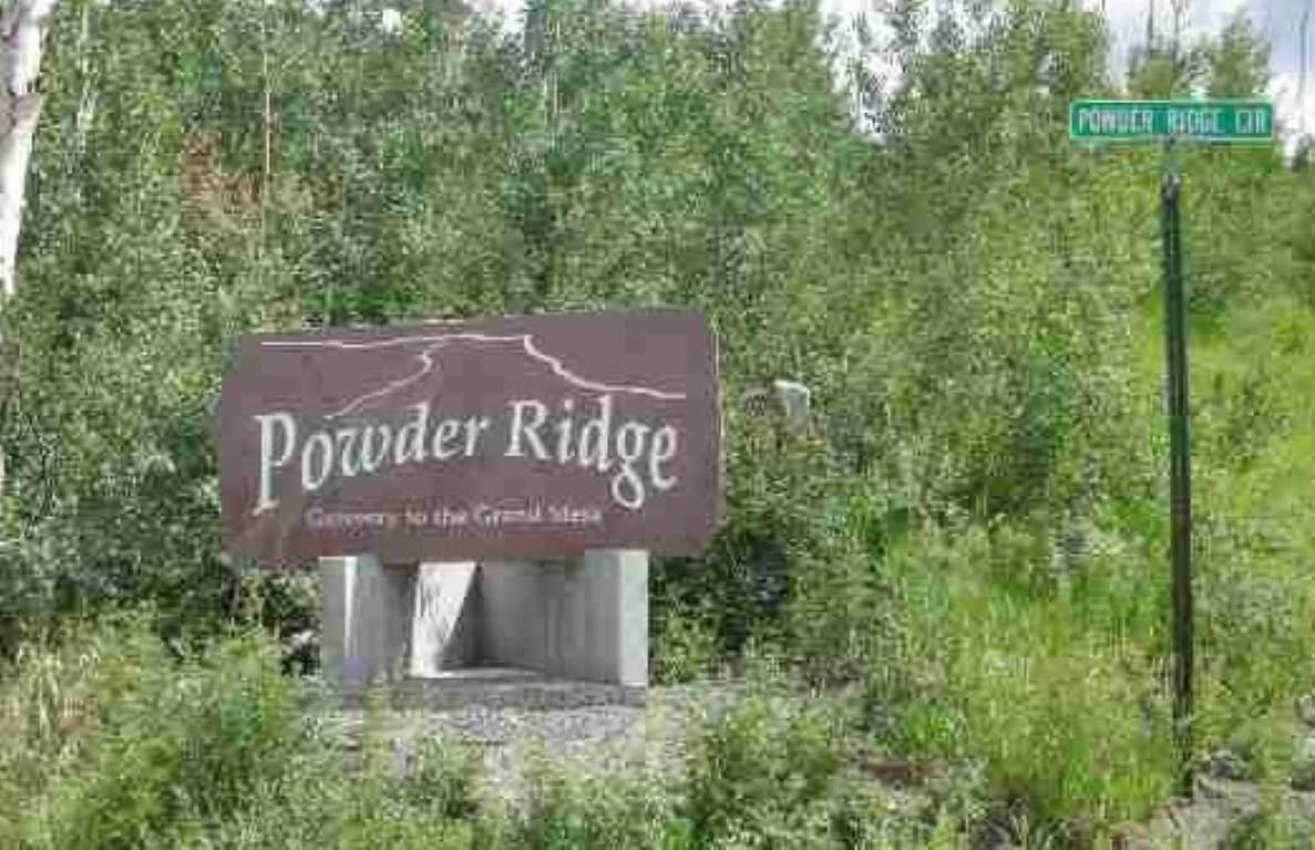 415 Powder Ridge Circle - Photo 1