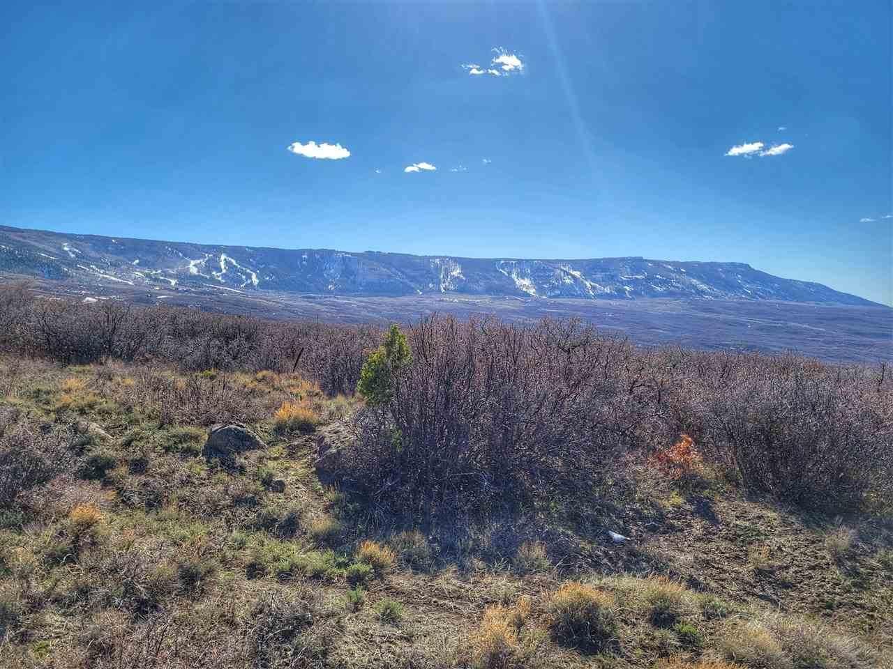 TBD Old Grand Mesa Road - Photo 1