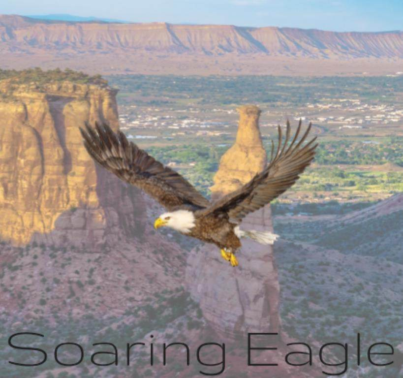 658 Soaring Eagle Drive - Photo 1