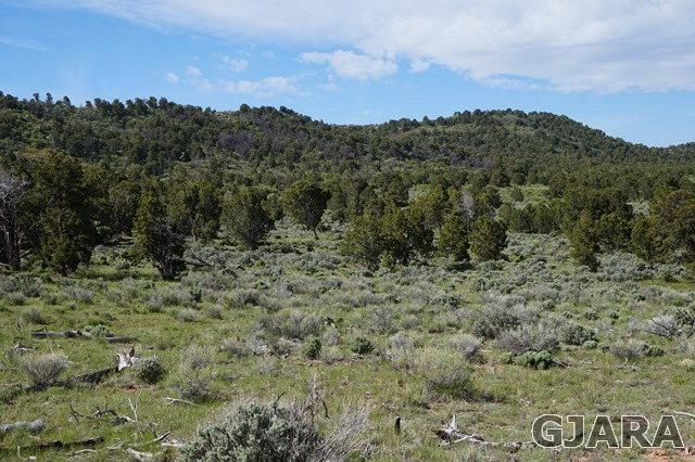 TBD Masters Ranch Road, Glade Park, CO 81523 (MLS #682027) :: The Christi Reece Group