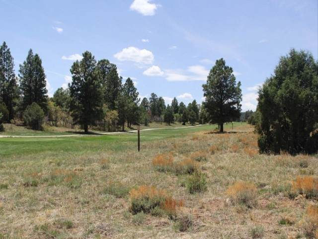 TBD N Badger Trail Lot 545, Ridgway, CO 81432 (MLS #20202560) :: The Kimbrough Team | RE/MAX 4000