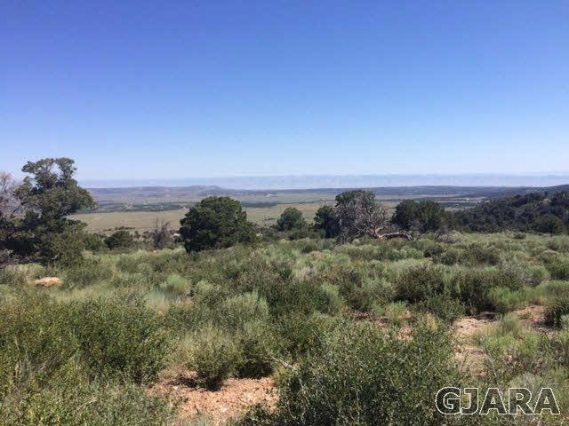 Lot #48 Eagles View Drive, Glade Park, CO 81523 (MLS #676854) :: The Christi Reece Group