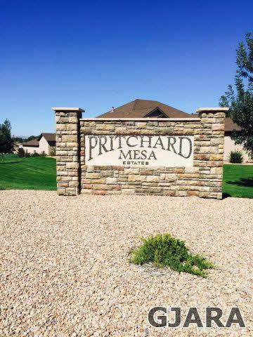 1022 Pritchard Mesa Court, Grand Junction, CO 81505 (MLS #678912) :: The Christi Reece Group