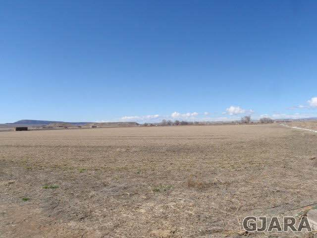1849 8 Road, Mack, CO 81525 (MLS #680437) :: The Kimbrough Team | RE/MAX 4000