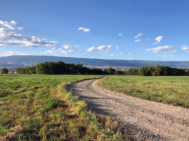 19239 G Road, Delta, CO 81416 (MLS #20195477) :: CapRock Real Estate, LLC
