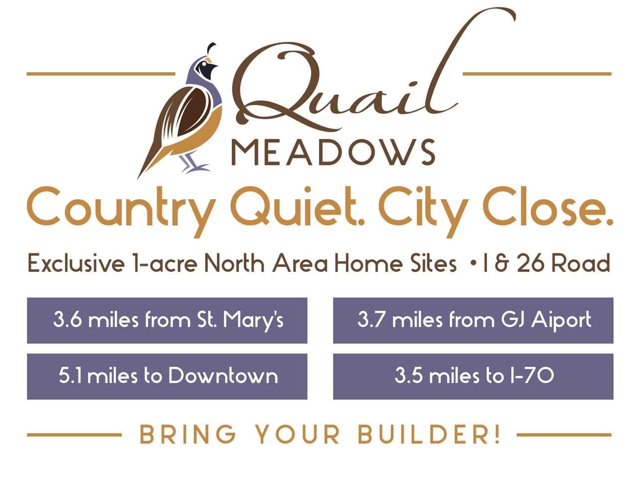 879 Quail Meadows Court - Photo 1
