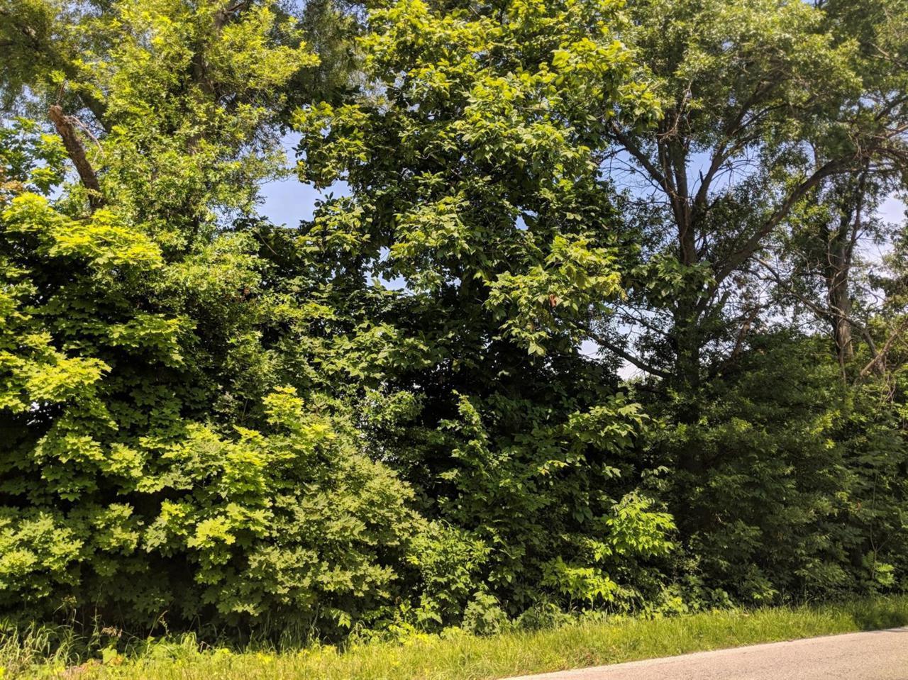0 County Line Road - Photo 1