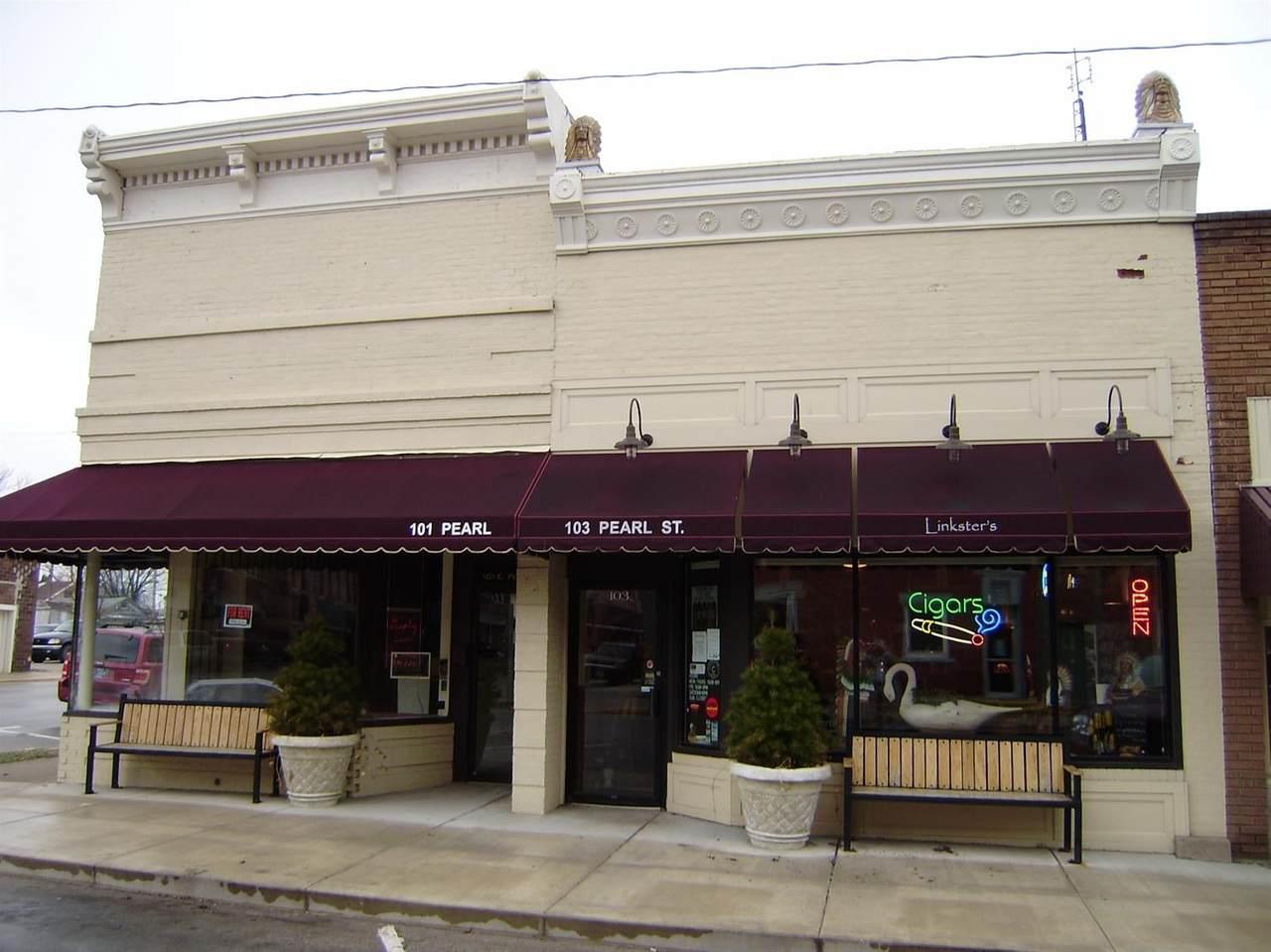 103 Pearl Street - Photo 1