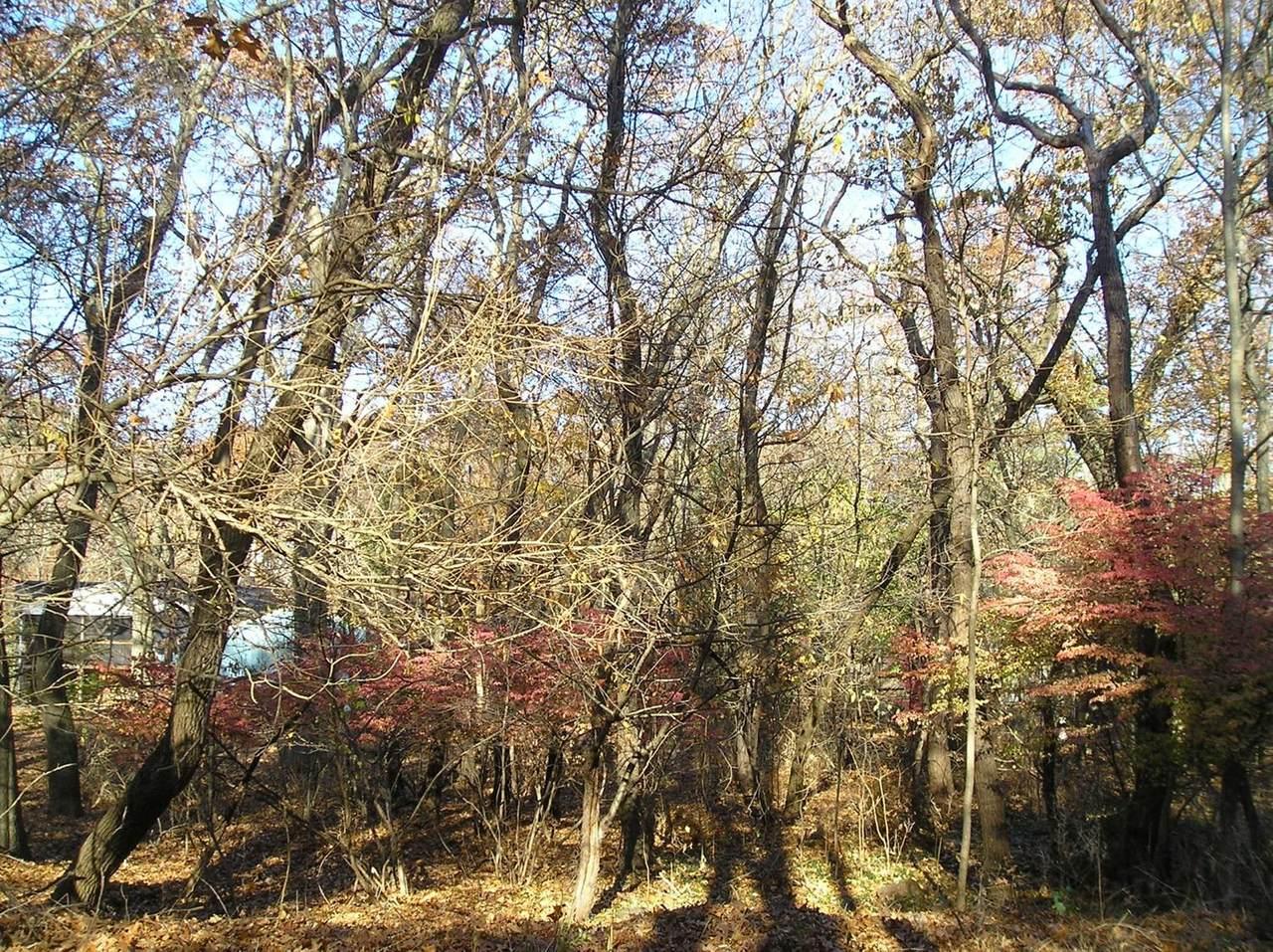 0 Birch Drive - Photo 1