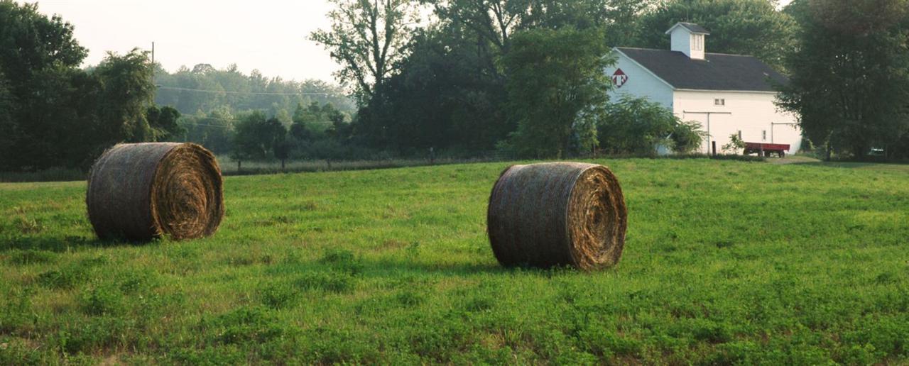 105 Tryon Farm Lane - Photo 1