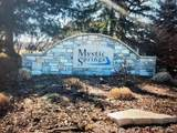 541 Lake Park Drive - Photo 1