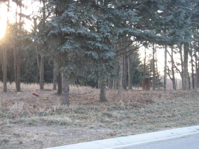 363 Ridgeview (Lot 3) Drive, Chesterton, IN 46304 (MLS #387446) :: Rossi and Taylor Realty Group