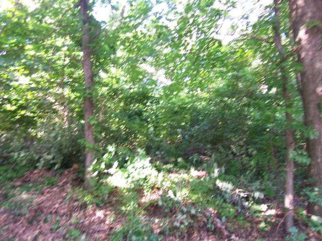 0 Schultz Lot 4 Road, Laporte, IN 46350 (MLS #416572) :: Rossi and Taylor Realty Group