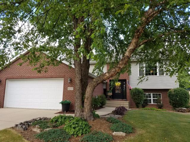 8255 Heron Lake Road, St. John, IN 46373 (MLS #417113) :: Rossi and Taylor Realty Group
