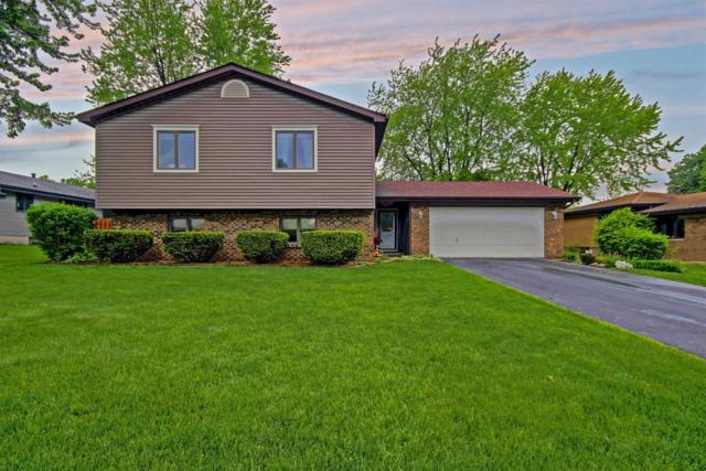 2454 Flat Rock Road, Dyer, IN 46311 (MLS #435497) :: Rossi and Taylor Realty Group