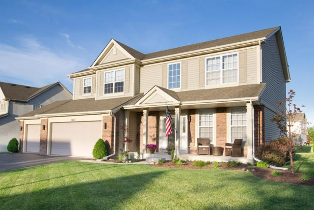9607 Dewey Place, Crown Point, IN 46307 (MLS #435515) :: Rossi and Taylor Realty Group