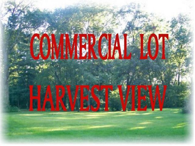 416 16TH Street SE, Demotte, IN 46310 (MLS #442952) :: McCormick Real Estate