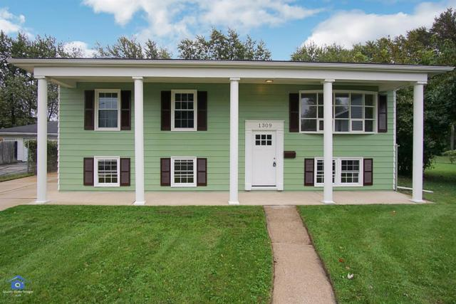 1309 N Indiana Street, Griffith, IN 46319 (MLS #444399) :: Rossi and Taylor Realty Group