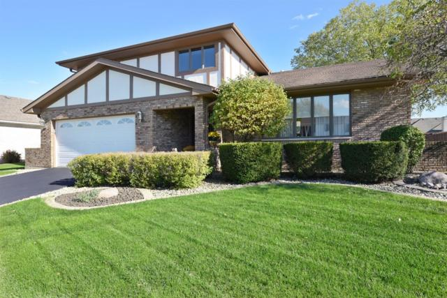 2623 Castlewood Drive, Dyer, IN 46311 (MLS #444597) :: Rossi and Taylor Realty Group