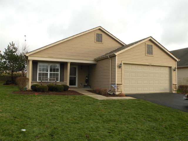 10307 Birchbrook Drive, Dyer, IN 46311 (MLS #446828) :: Rossi and Taylor Realty Group