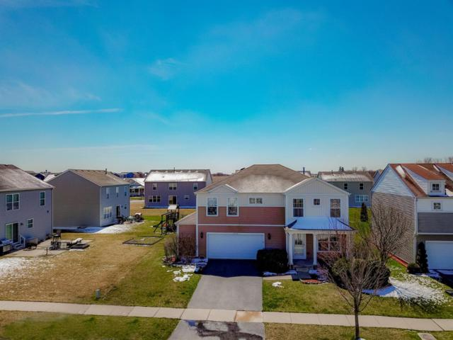13725 Golden Grove Avenue, Dyer, IN 46311 (MLS #452922) :: Rossi and Taylor Realty Group
