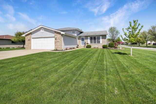 10667 Millard Drive, St. John, IN 46373 (MLS #454846) :: Rossi and Taylor Realty Group