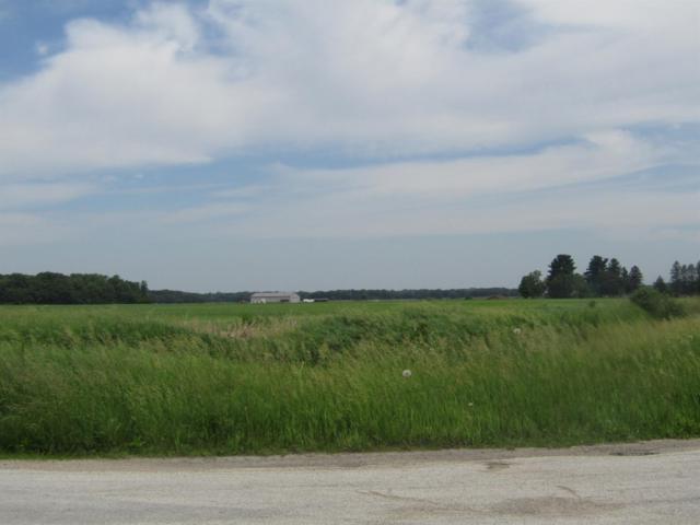 9798 N Meridian Road, Lake Village, IN 46349 (MLS #456613) :: Rossi and Taylor Realty Group