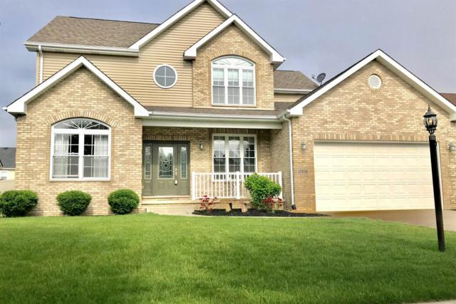 10358 Trevino Street, Crown Point, IN 46307 (MLS #457096) :: Rossi and Taylor Realty Group