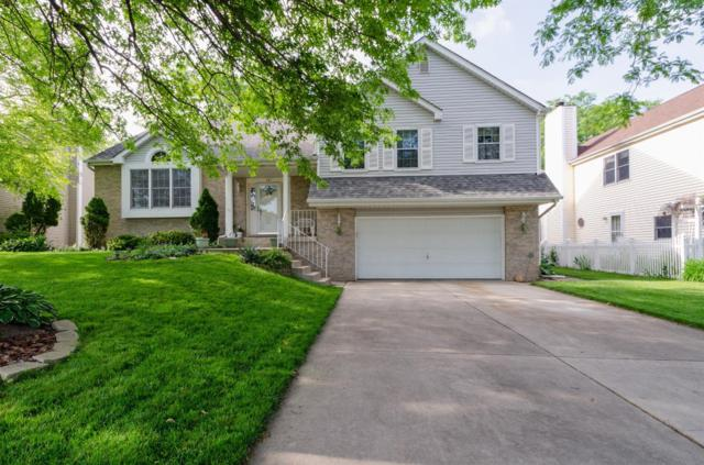161 Ridgewood Lane, Dyer, IN 46311 (MLS #457169) :: Rossi and Taylor Realty Group