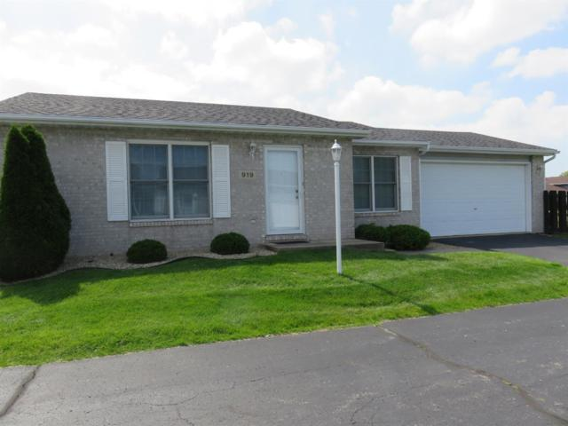 919 Windsor Lane, Dyer, IN 46311 (MLS #457174) :: Rossi and Taylor Realty Group