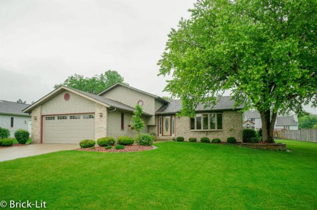 8869 Schillton Drive, St. John, IN 46373 (MLS #457430) :: Rossi and Taylor Realty Group
