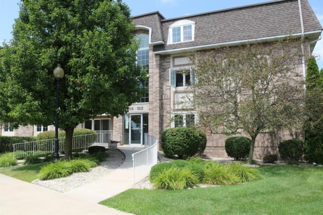 501 Swan Drive, Dyer, IN 46311 (MLS #459877) :: Rossi and Taylor Realty Group