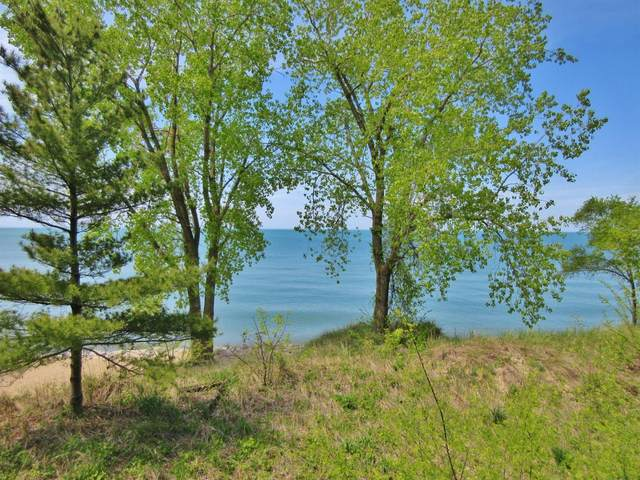 0-0 W Lakefront Drive, Beverly Shores, IN 46301 (MLS #470109) :: Rossi and Taylor Realty Group