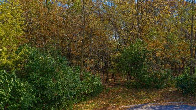 3071 Wood Haven Lane, Dyer, IN 46311 (MLS #470275) :: Rossi and Taylor Realty Group