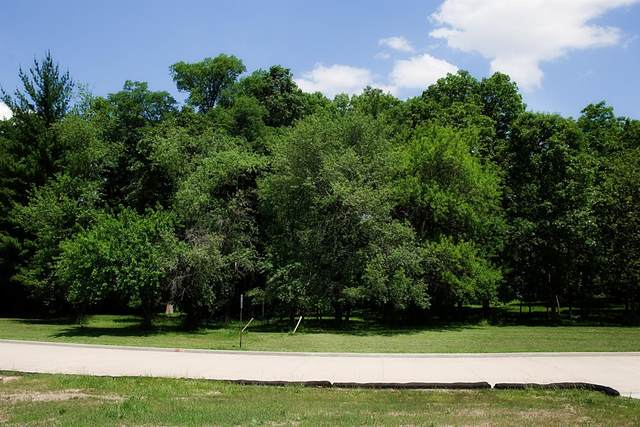 3718-Lot 81 167th Avenue, Lowell, IN 46356 (MLS #476290) :: Rossi and Taylor Realty Group