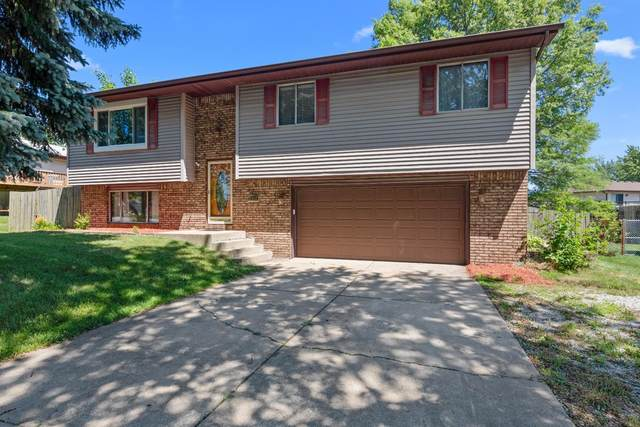 6364 Lute Road, Portage, IN 46368 (MLS #477307) :: Rossi and Taylor Realty Group