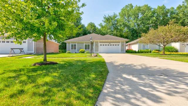 6063 Trailcreek Avenue, Portage, IN 46368 (MLS #477445) :: Rossi and Taylor Realty Group