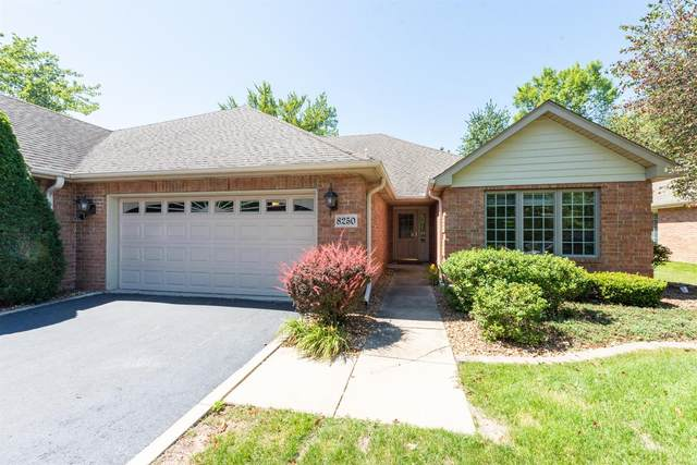 8250 Meadow Lane, St. John, IN 46373 (MLS #480236) :: Rossi and Taylor Realty Group