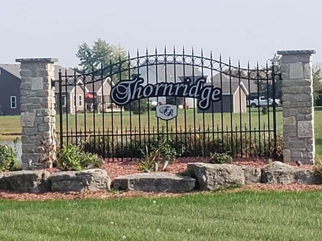 6549 Blackthorn Drive, Demotte, IN 46310 (MLS #484059) :: McCormick Real Estate