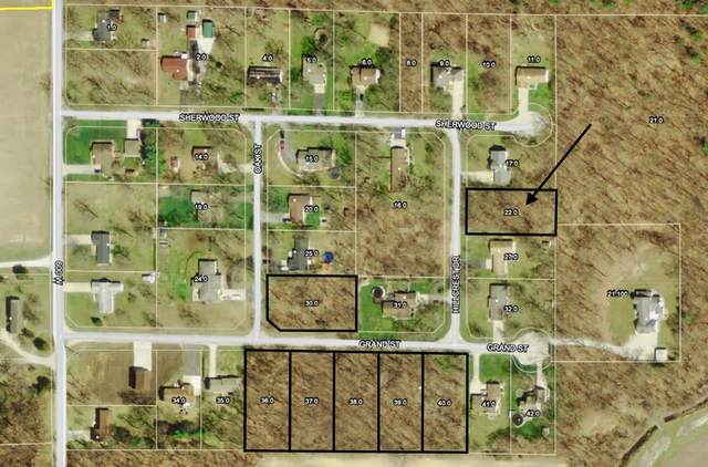 0-TBD S Hillcrest Drive, North Judson, IN 46366 (MLS #484086) :: McCormick Real Estate
