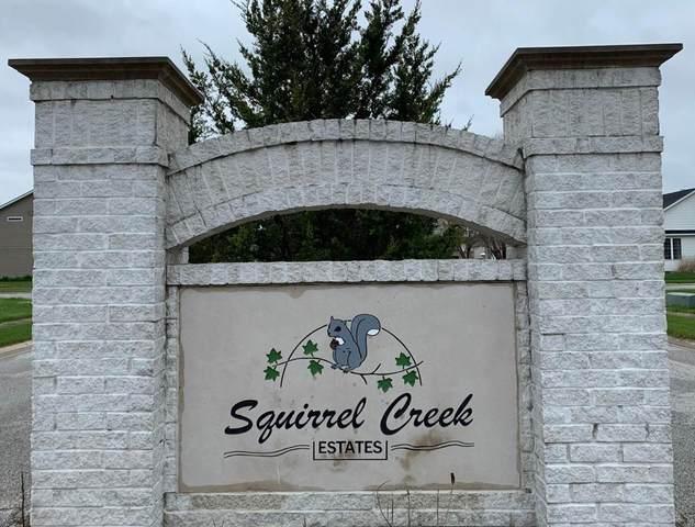 0-Lot 1 Squirrel Creek Avenue, Portage, IN 46368 (MLS #484911) :: Lisa Gaff Team