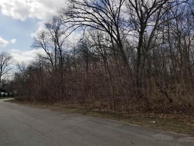 0 Georgetown Drive, Demotte, IN 46310 (MLS #485404) :: Lisa Gaff Team