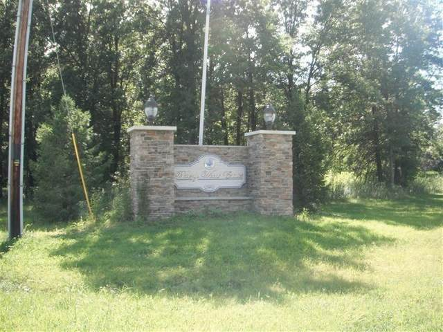 3211 Nelson Lane, Wheatfield, IN 46392 (MLS #485414) :: McCormick Real Estate