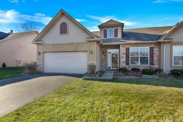 810 Manistee Avenue, Schererville, IN 46375 (MLS #485812) :: McCormick Real Estate