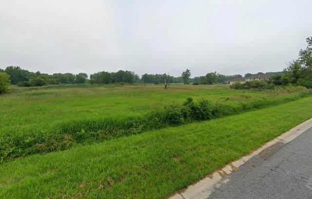 7460 Burr Street, Schererville, IN 46375 (MLS #487541) :: McCormick Real Estate