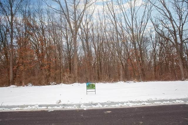16676-Lot 13 Willard, Lowell, IN 46356 (MLS #489196) :: McCormick Real Estate