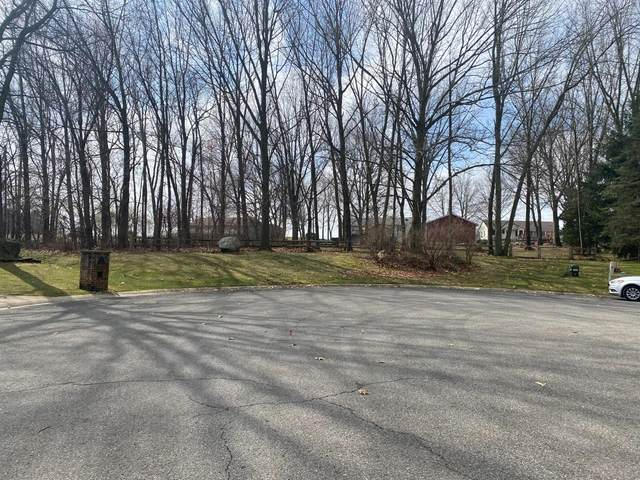 55420 Forest Cove Court, New Carlisle, IN 46552 (MLS #490222) :: McCormick Real Estate