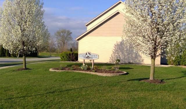 927 Veterans Lane, Crown Point, IN 46307 (MLS #490907) :: McCormick Real Estate
